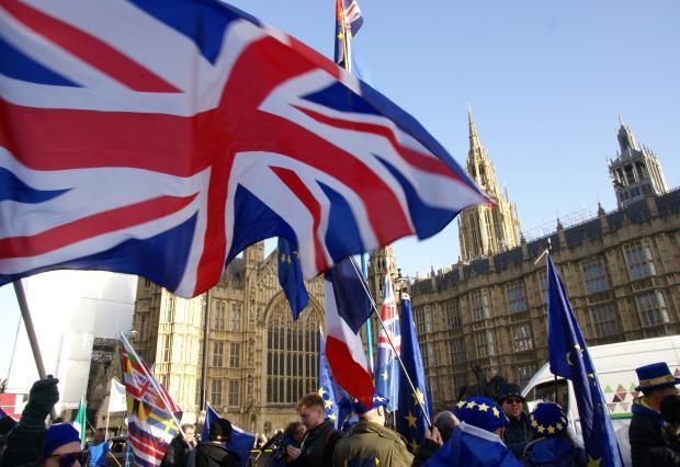 Brexit_Protestors_Westminster.jpg